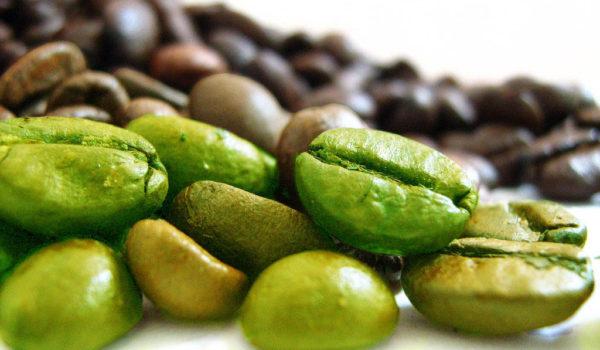 bienfaits-cafe-vert