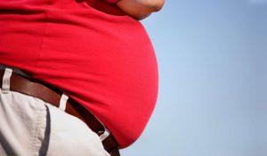 causes-obésité